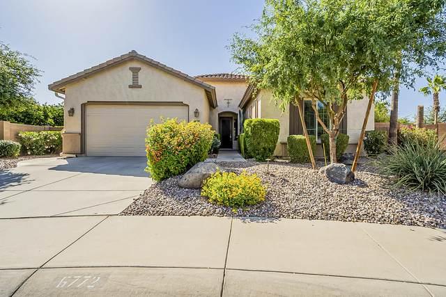 6772 S Black Hills Way, Chandler, AZ 85249 (MLS #6235868) :: Arizona 1 Real Estate Team