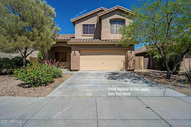 39829 N River Bend Road, Phoenix, AZ 85086 (MLS #6235891) :: Arizona 1 Real Estate Team