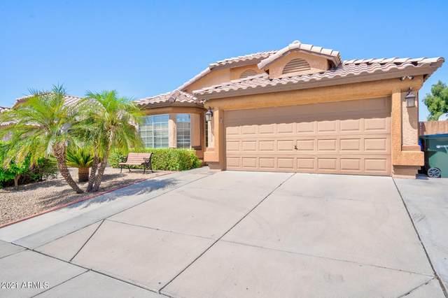 17636 N 25TH Place, Phoenix, AZ 85032 (MLS #6235902) :: Yost Realty Group at RE/MAX Casa Grande
