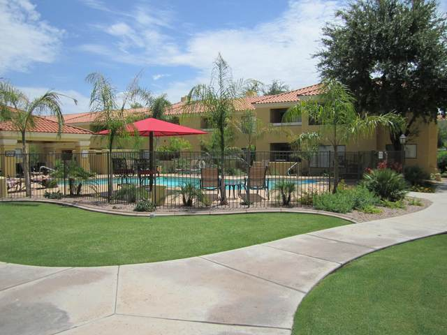9990 N Scottsdale Road #2013, Paradise Valley, AZ 85253 (MLS #6235914) :: My Home Group
