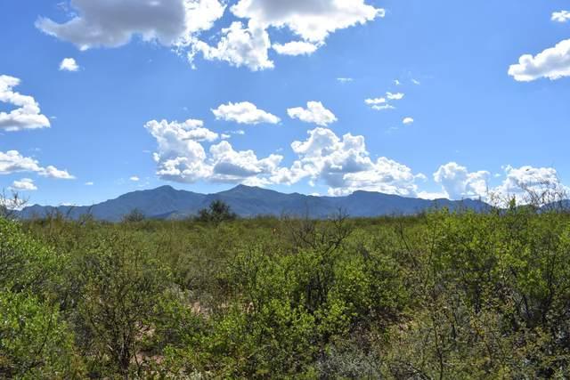 0000 Tbd, Huachuca City, AZ 85616 (MLS #6235921) :: Dave Fernandez Team | HomeSmart