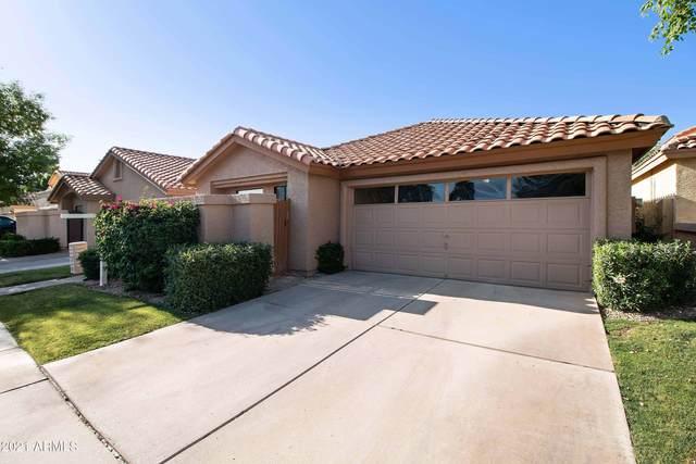 48 E Greentree Drive, Tempe, AZ 85284 (MLS #6235931) :: Arizona 1 Real Estate Team