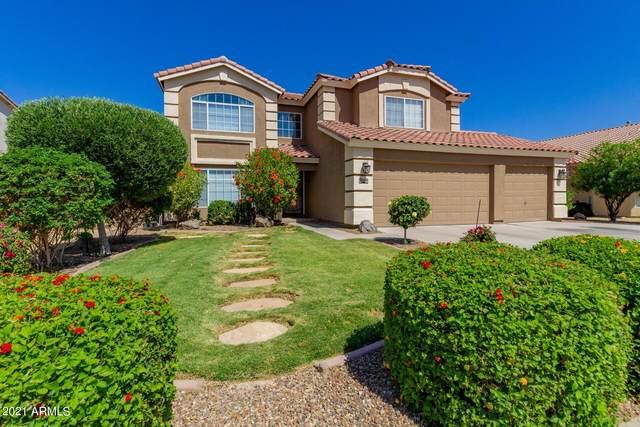31660 N Royal Oak Way, San Tan Valley, AZ 85143 (MLS #6235939) :: Balboa Realty