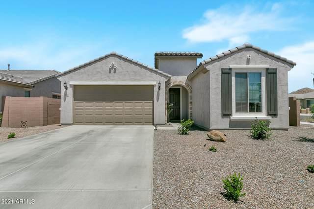 7066 W Jasmine Trail, Peoria, AZ 85383 (MLS #6236016) :: The Newman Team