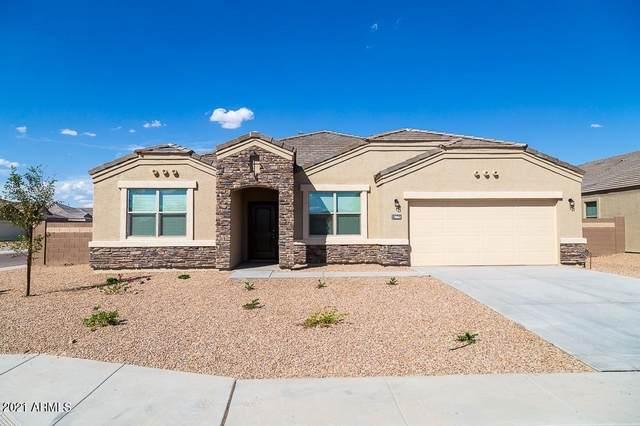 30662 W Mulberry Drive, Buckeye, AZ 85396 (MLS #6236025) :: The Newman Team