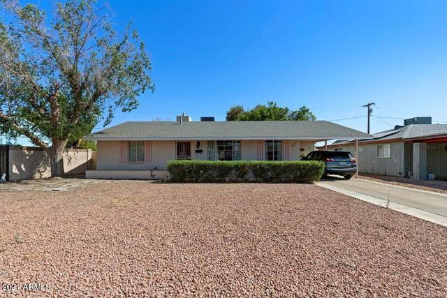 1625 W Ironwood Drive, Phoenix, AZ 85021 (MLS #6236059) :: The Laughton Team