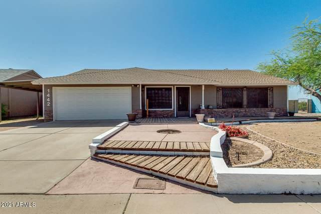 1442 N Ashland, Mesa, AZ 85203 (MLS #6236068) :: Arizona 1 Real Estate Team