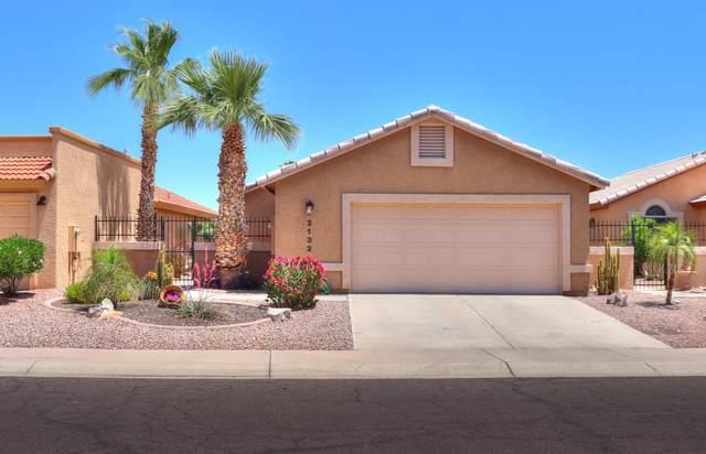 2132 N Sweetwater Drive, Casa Grande, AZ 85122 (MLS #6236104) :: Sheli Stoddart Team | M.A.Z. Realty Professionals