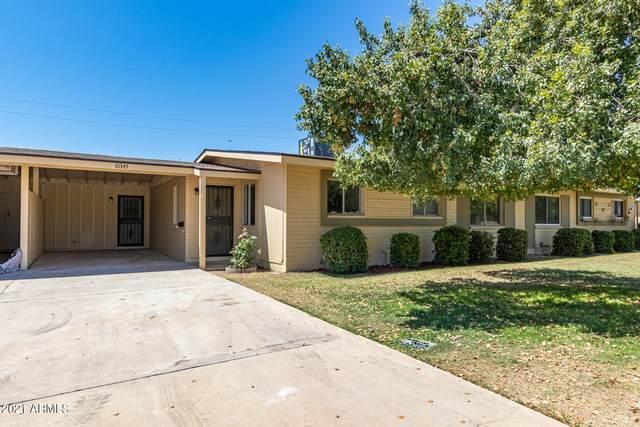 10345 W Audrey Drive, Sun City, AZ 85351 (MLS #6236109) :: Sheli Stoddart Team | M.A.Z. Realty Professionals