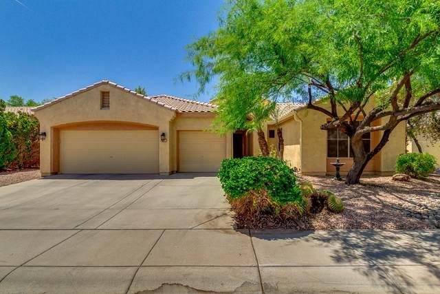 2426 S Pecan Drive, Chandler, AZ 85248 (MLS #6236137) :: The Helping Hands Team