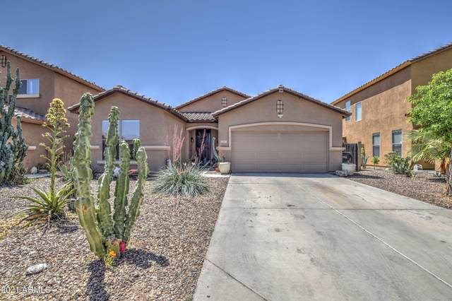 11767 W Mohave Street, Avondale, AZ 85323 (MLS #6236173) :: Long Realty West Valley