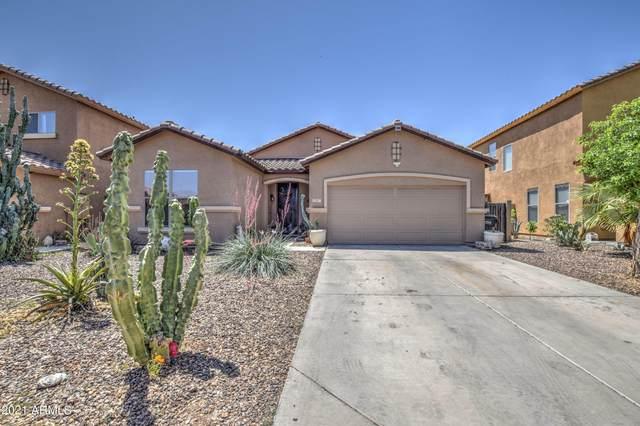 11767 W Mohave Street, Avondale, AZ 85323 (MLS #6236173) :: The Luna Team