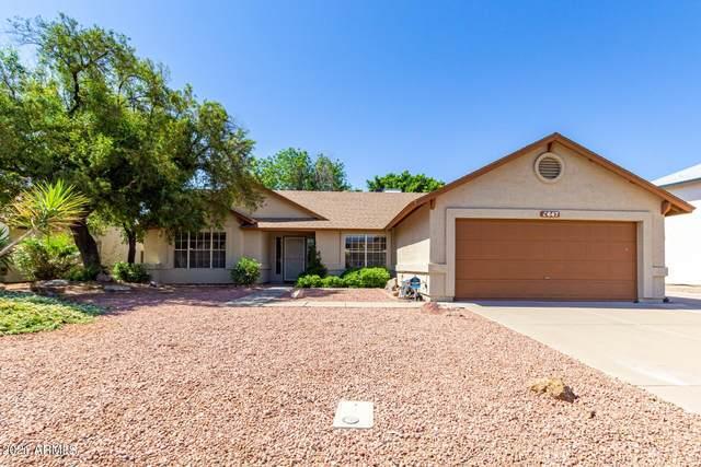 3647 W Elgin Street, Chandler, AZ 85226 (MLS #6236185) :: The Helping Hands Team