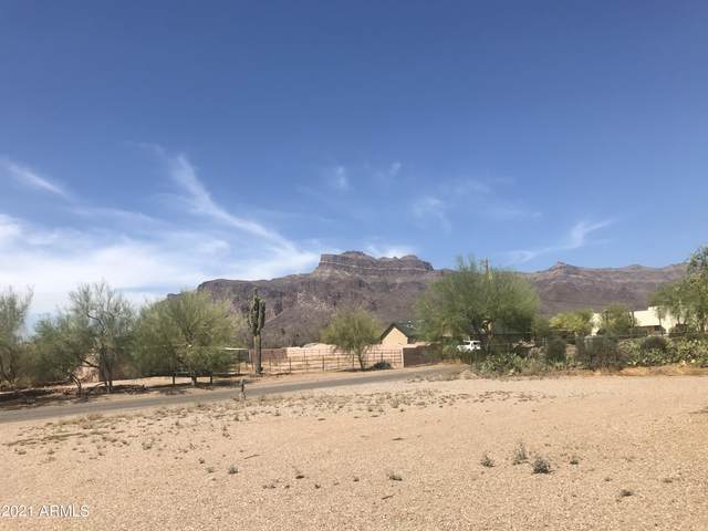 5675 E 16TH Avenue, Apache Junction, AZ 85119 (MLS #6236217) :: Arizona Home Group