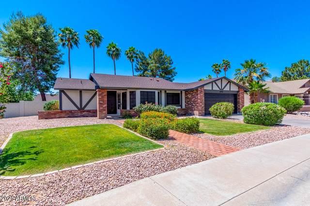 8993 E Gray Road, Scottsdale, AZ 85260 (MLS #6236235) :: Sheli Stoddart Team   M.A.Z. Realty Professionals