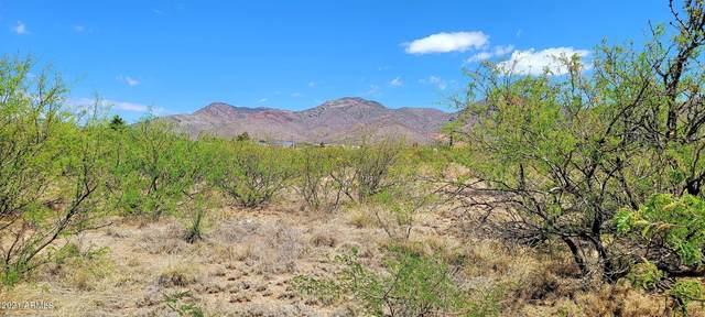 TBD Santa Cruz Drive Lot 33 & 34, Bisbee, AZ 85603 (MLS #6236261) :: ASAP Realty