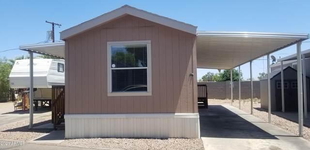 5002 W Bethany Home Road #123, Glendale, AZ 85301 (MLS #6236295) :: The AZ Performance PLUS+ Team