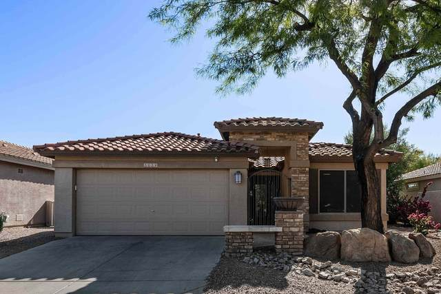 5039 S Lantana Lane, Gilbert, AZ 85298 (MLS #6236328) :: Zolin Group