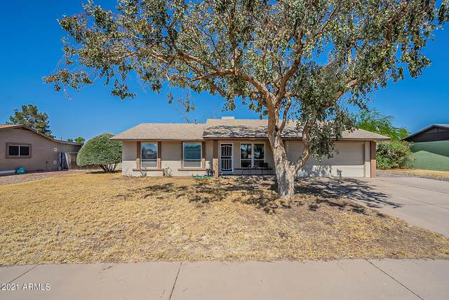 19232 N 17TH Avenue, Phoenix, AZ 85027 (MLS #6236329) :: Yost Realty Group at RE/MAX Casa Grande