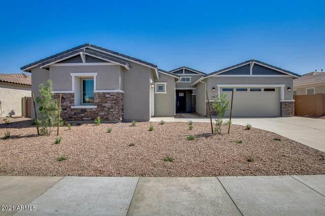 12487 W Oyer Lane, Peoria, AZ 85383 (MLS #6236345) :: Sheli Stoddart Team | M.A.Z. Realty Professionals