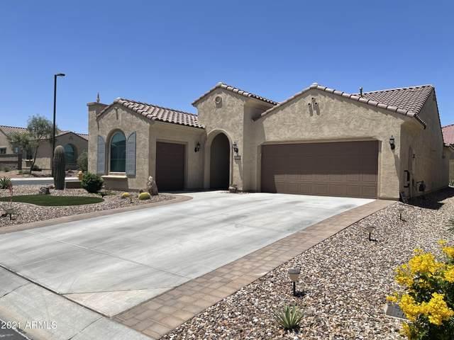 8074 W Valor Way, Florence, AZ 85132 (MLS #6236355) :: Nate Martinez Team