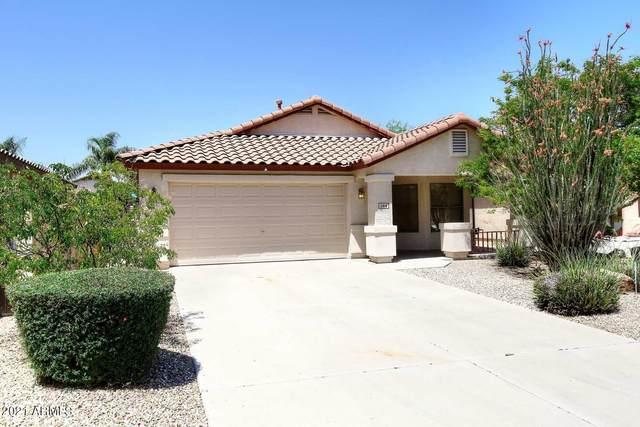 2416 W Oberlin Way, Phoenix, AZ 85085 (MLS #6236359) :: Sheli Stoddart Team | M.A.Z. Realty Professionals