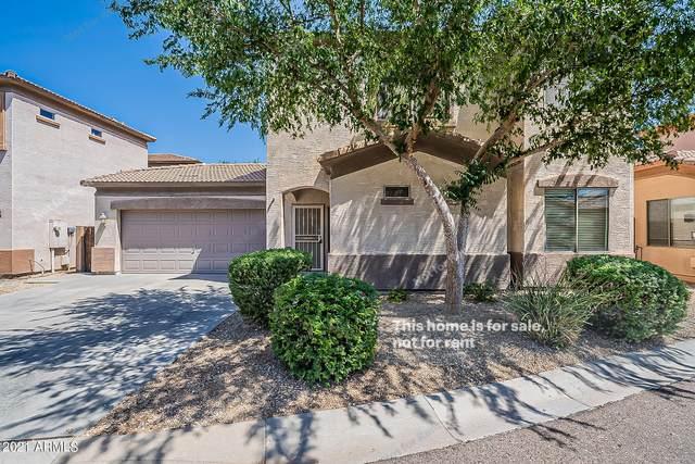 3544 W Kathleen Road, Phoenix, AZ 85053 (MLS #6236365) :: Yost Realty Group at RE/MAX Casa Grande