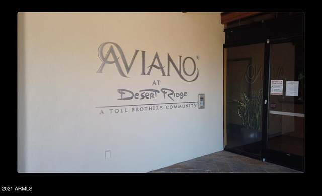 3966 E Crest Lane, Phoenix, AZ 85050 (MLS #6236389) :: The Newman Team