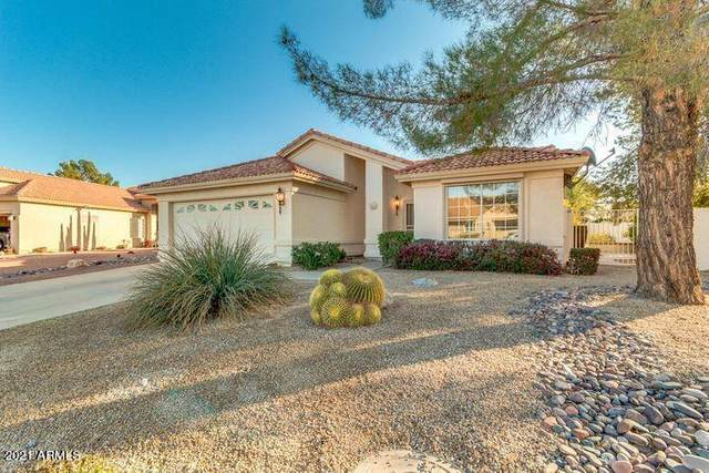 26615 S Moonshadow Drive, Sun Lakes, AZ 85248 (MLS #6236412) :: Midland Real Estate Alliance