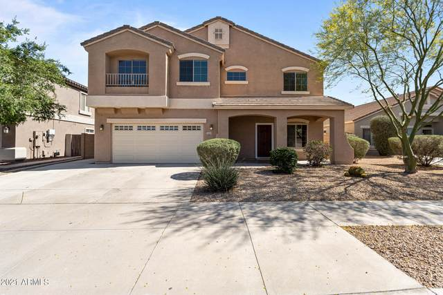 17435 W Hilton Avenue, Goodyear, AZ 85338 (MLS #6236417) :: Yost Realty Group at RE/MAX Casa Grande