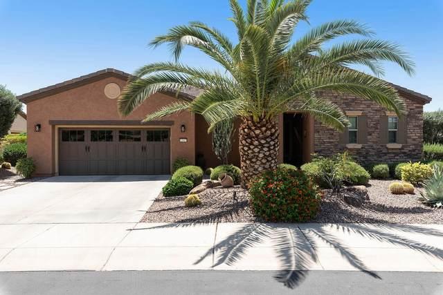 12927 W White Feather Lane, Peoria, AZ 85383 (#6236458) :: AZ Power Team