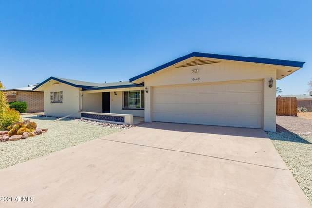 6649 E Ellis Street, Mesa, AZ 85205 (MLS #6236523) :: Klaus Team Real Estate Solutions