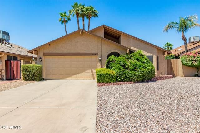 18614 N 45TH Avenue, Glendale, AZ 85308 (MLS #6236564) :: Nate Martinez Team