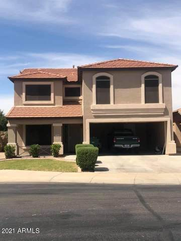 21288 N Reinbold Drive, Maricopa, AZ 85138 (MLS #6236568) :: Yost Realty Group at RE/MAX Casa Grande
