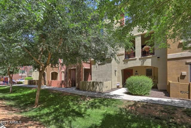 900 S 94TH Street #1183, Chandler, AZ 85224 (MLS #6236607) :: Midland Real Estate Alliance