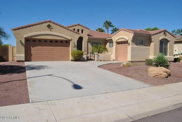 14122 N 90TH Lane, Peoria, AZ 85381 (MLS #6236618) :: The Dobbins Team