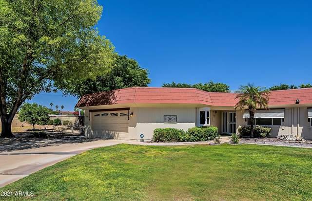 16849 N 103RD Drive, Sun City, AZ 85351 (MLS #6236637) :: Nate Martinez Team