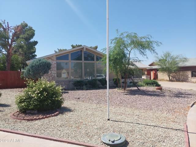 10923 W Edgewood Drive, Sun City, AZ 85351 (MLS #6236677) :: Nate Martinez Team