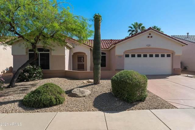 15425 W Domingo Lane, Sun City West, AZ 85375 (MLS #6236688) :: Zolin Group