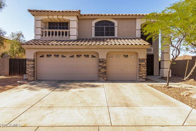 21999 W Morning Glory Street, Buckeye, AZ 85326 (MLS #6236693) :: Nate Martinez Team