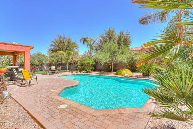 66 N Southfork Drive, Casa Grande, AZ 85122 (MLS #6236756) :: Nate Martinez Team