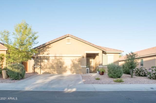 5021 S 243RD Drive, Buckeye, AZ 85326 (MLS #6236760) :: Long Realty West Valley