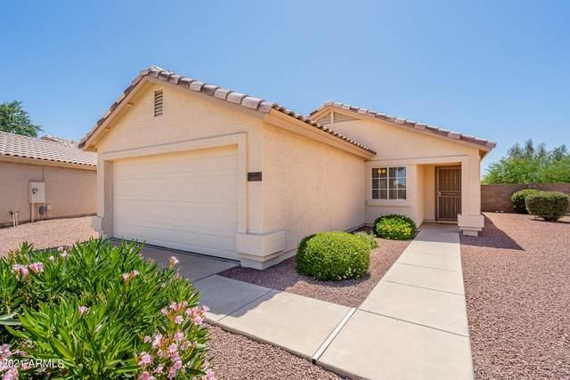11610 N Olive Street, El Mirage, AZ 85335 (#6236761) :: The Josh Berkley Team