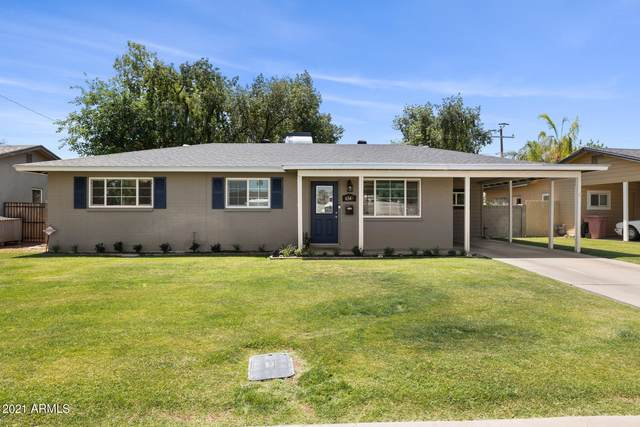 6545 E 5TH Street, Scottsdale, AZ 85251 (MLS #6236842) :: Hurtado Homes Group