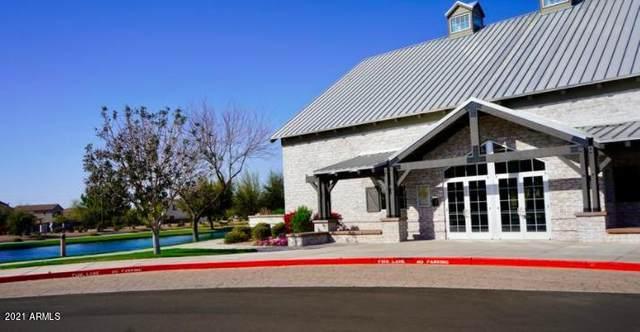 4001 E Timberline Road, Gilbert, AZ 85297 (MLS #6236846) :: Arizona Home Group