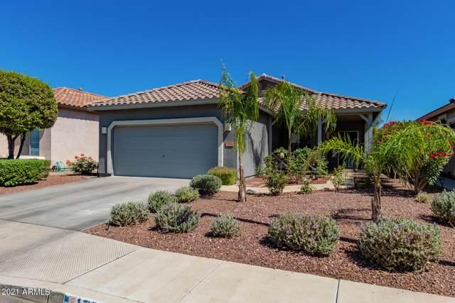 17016 W Lundberg Street, Surprise, AZ 85388 (MLS #6236951) :: neXGen Real Estate
