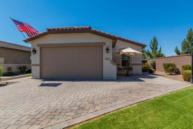 551 W Evergreen Pear Avenue, Queen Creek, AZ 85140 (MLS #6236954) :: Klaus Team Real Estate Solutions