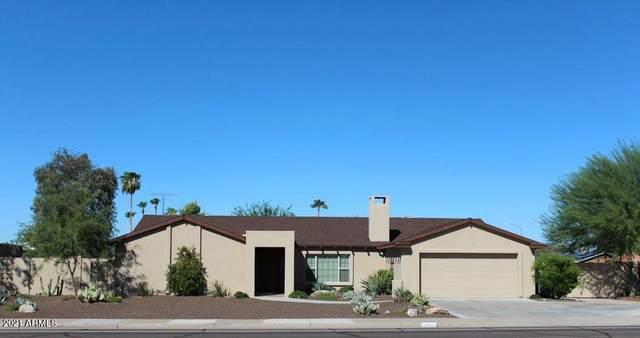 13840 N 64th Street, Scottsdale, AZ 85254 (MLS #6236961) :: The AZ Performance PLUS+ Team