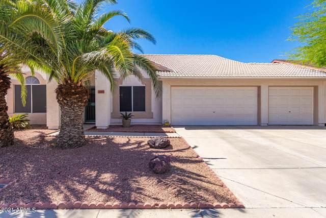 4219 W Misty Willow Lane, Glendale, AZ 85310 (#6237004) :: The Josh Berkley Team