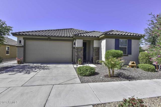 17193 W Straight Arrow Lane, Surprise, AZ 85387 (MLS #6237019) :: Midland Real Estate Alliance